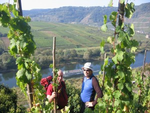 moselle valley 3